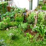 AU_jardin_individuelle
